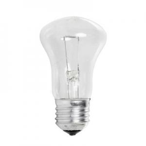 Лампа накаливания 100W E27 1240lm